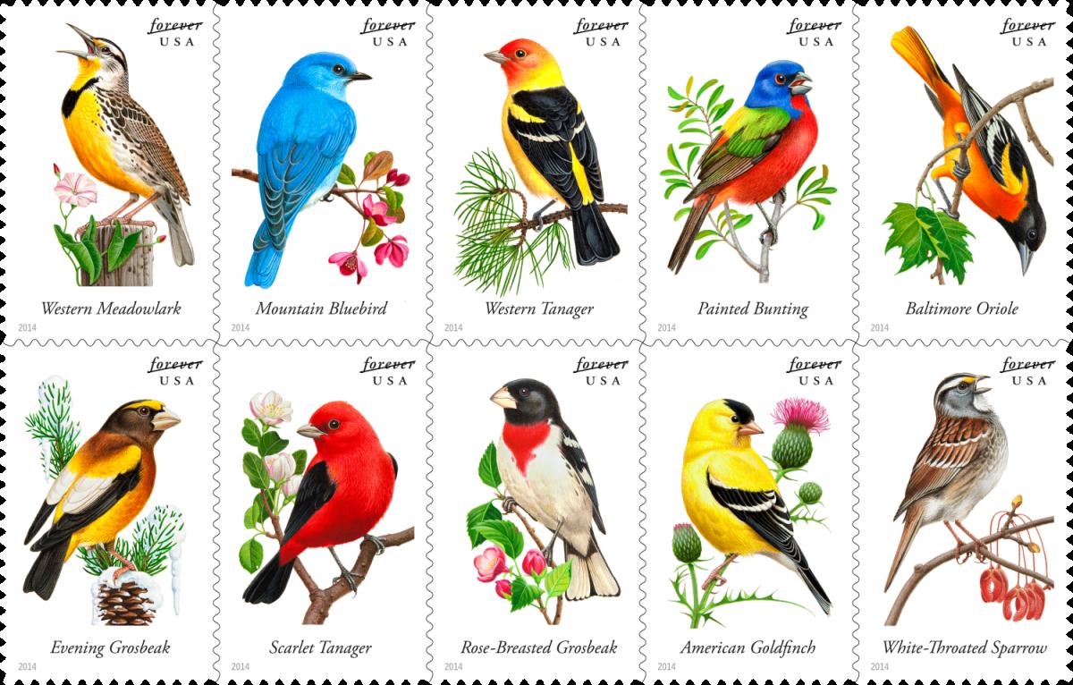 Songbirds_Block_0